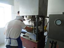 金花茶生产