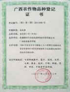 金花茶品种登记证书