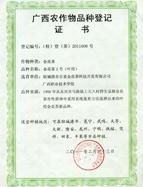 金花茶2号(花用)农作物品种登记证书